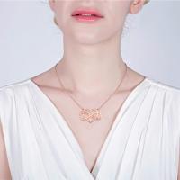 Collier Infini-2 Prénoms-Plaqué Or Rose