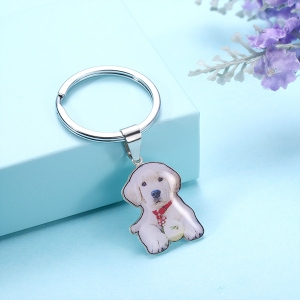 Engraved Pet Color Photo Keychain